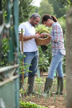 Happy married couple together in a vegetable garden.